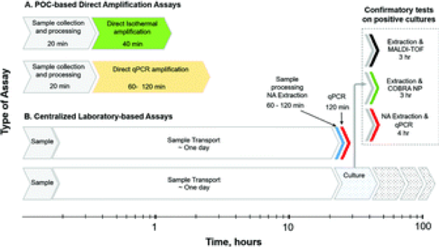 Implications of direct amplification for measuring antimicrobial resistance using point-of-care devices.