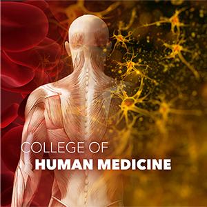 Graphic image representing human medicine