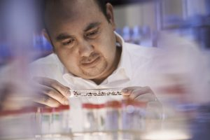 image of Ehab Abouheif in a lab examining a dish with ants in it.